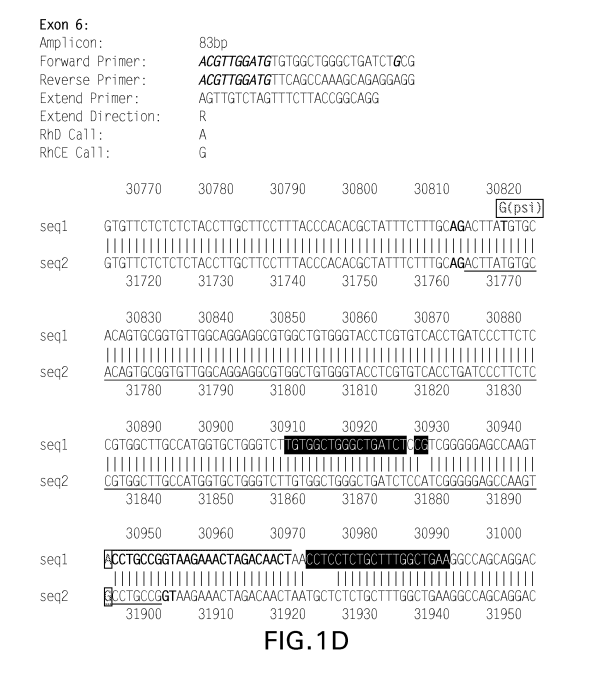 Patent US20080299562 - Nucleic acid-based tests for rhd ...