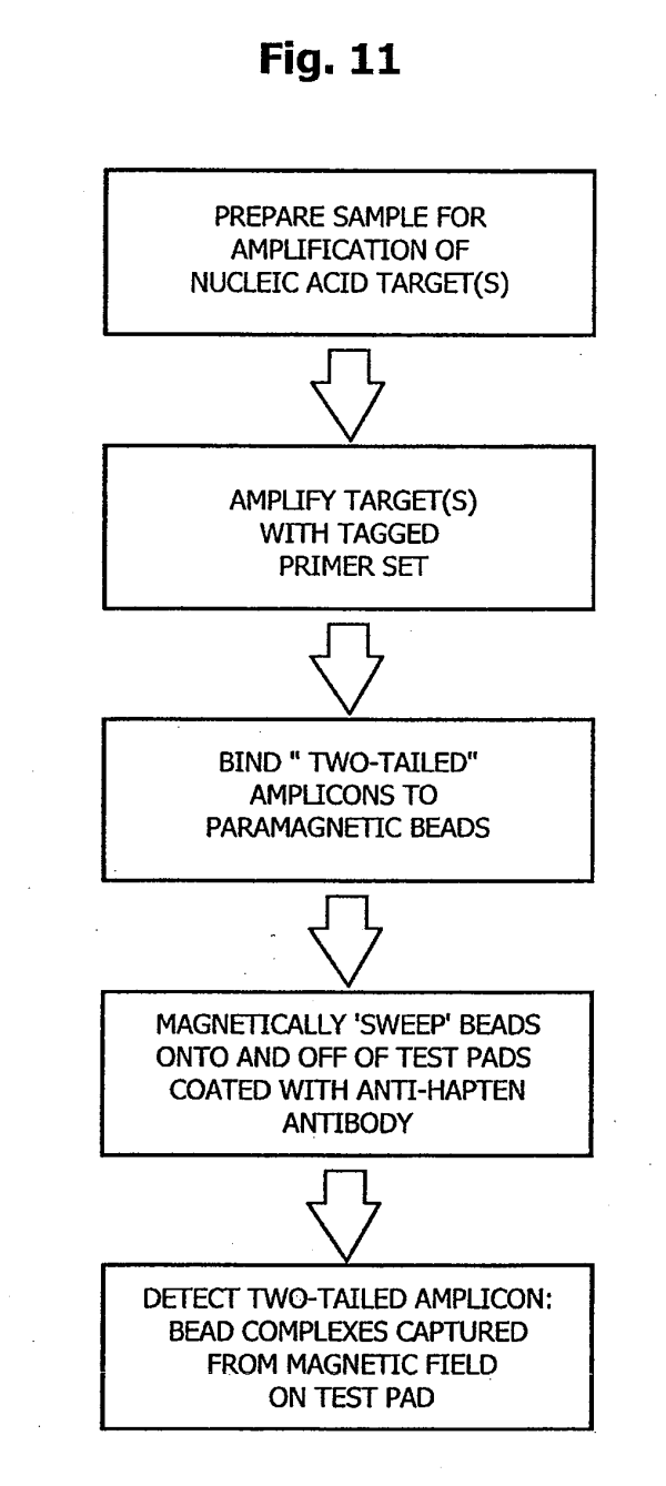 Patent US20090148847 - Rapid magnetic flow assays - Google ...