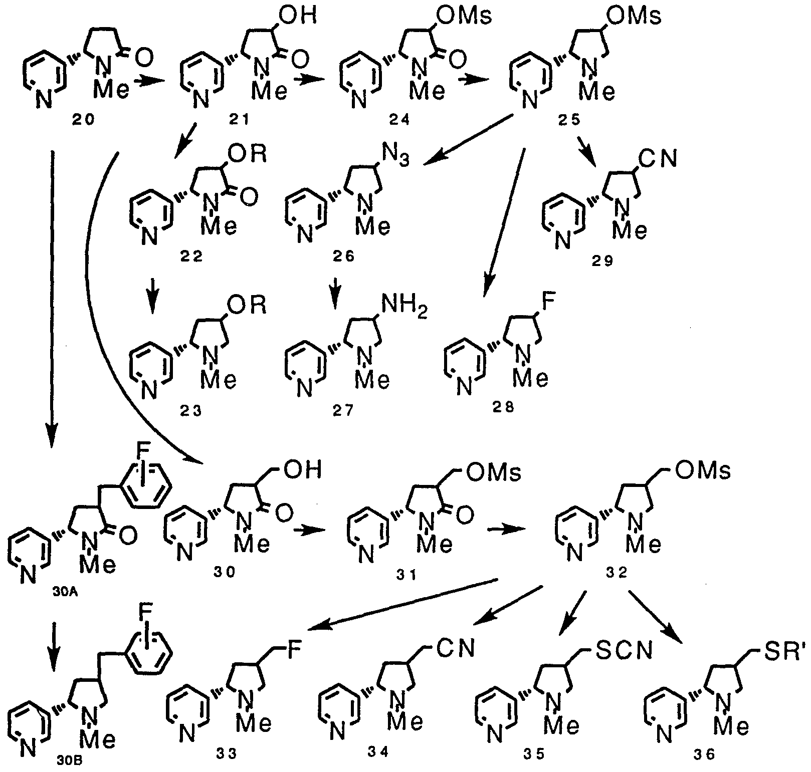 tags: #lewis dot diagram for lithium neutron#lewis dot diagram for  helium#lewis dot diagram for strontium#cation lewis dot diagram for h#lewis  dot model for