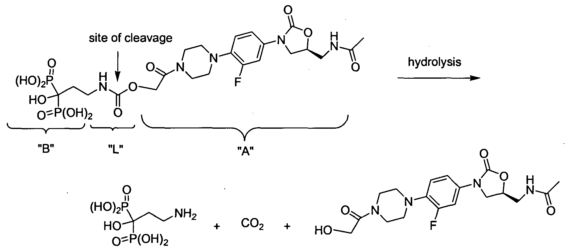 Drug Synthesis International Zolid Series