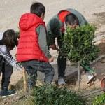 Unos niños plan un árbol durante la celebración del pasado día del árbol de Multipaterna