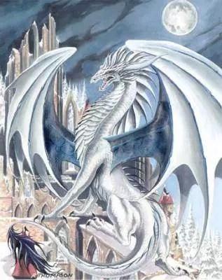 Reiki Snap Of The Dragon
