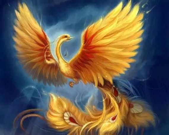 Reiki Phoenix