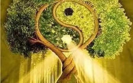 transformation karma,reiki transformation karma,initiation,patetnina