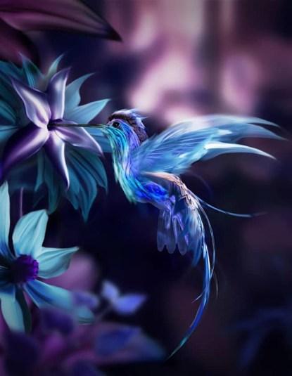 bel oiseau bleu