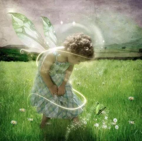 enfant papillon2