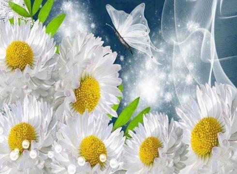 papillon fleur2