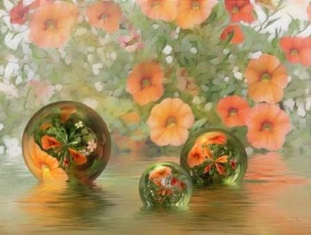 bulles fleurs