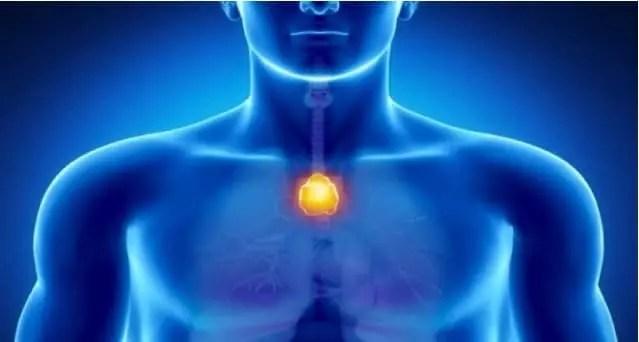 Le point du bonheur dans votre corps – neutralisez l'énergie négative et renforcez votre système immunitaire