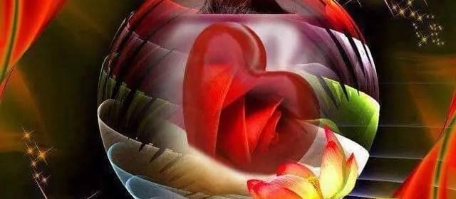 l'amour aime