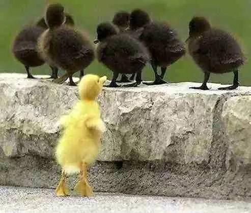 Votre entourage est-il déçu de constater que vous n'êtes plus comme avant