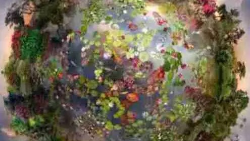 Astro Maya,ici et maintenant,la régénération