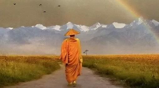 Quel chemin voulez-vous prendre après la vie