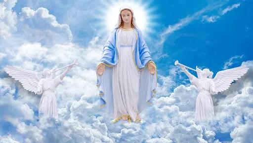 Mère Divine : Degrés d'éveil