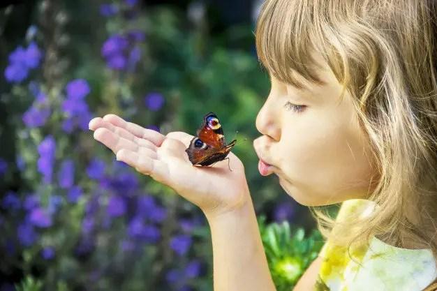 Un papillon sur la main