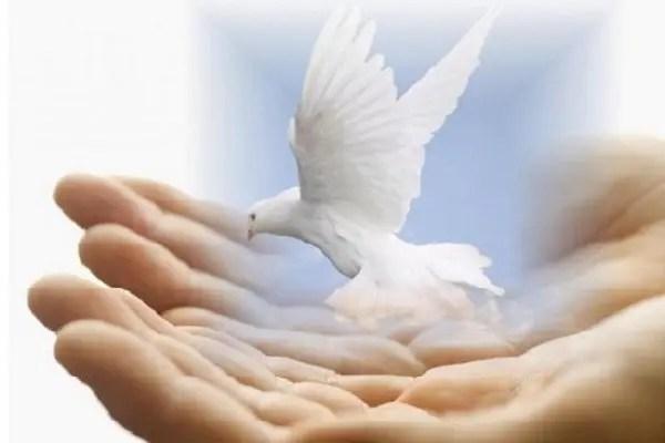 la paix du monde