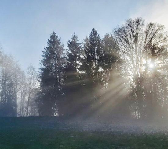 El blog del movimiento consciente de Azul, Amara Pagano, comparte sobre pasar del miedo a la confianza