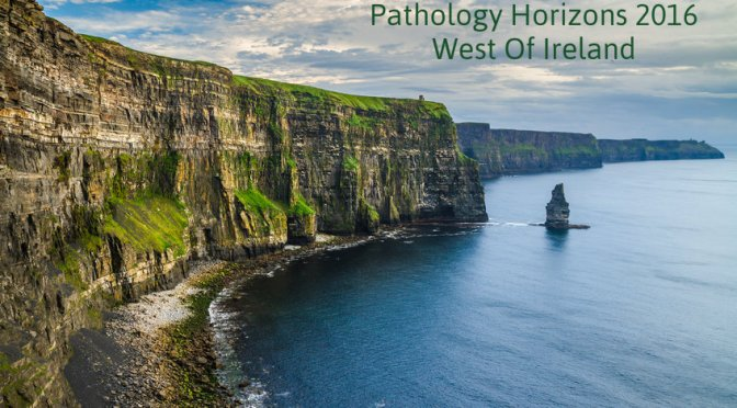 Pathology Horizons Conference Countdown