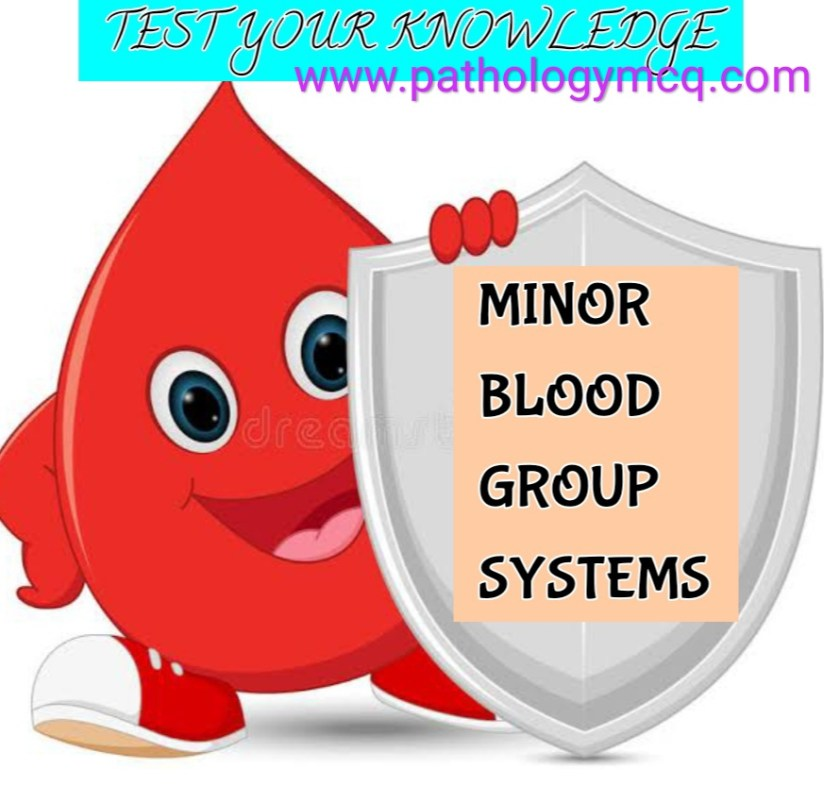 Minor blood group systems quiz