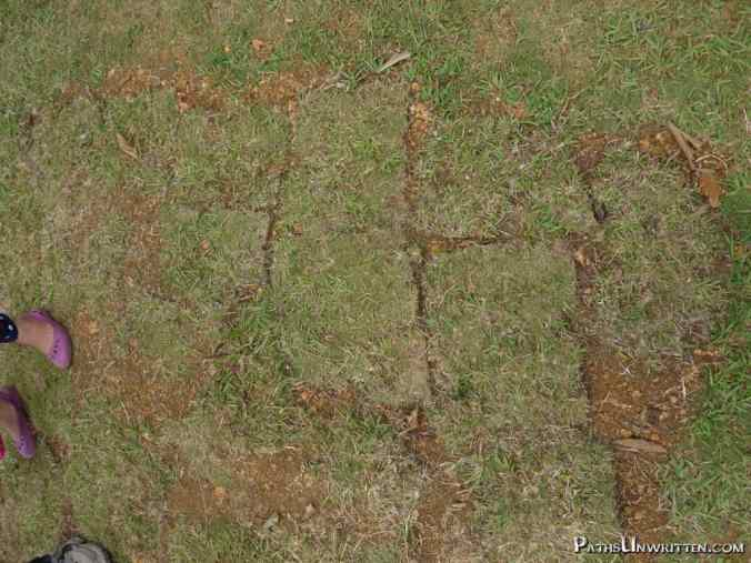 Recently-broken ground from an excavation effort during my April 2015 visit.