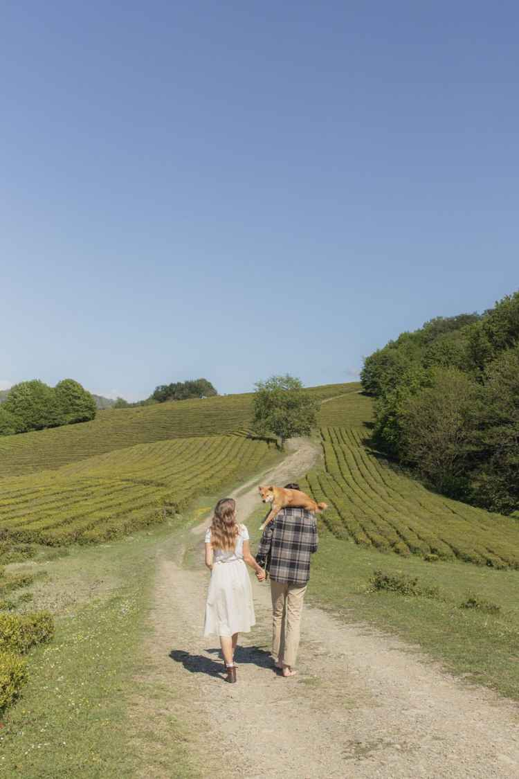 lovely couple walking on pathway with a dog on the man s back