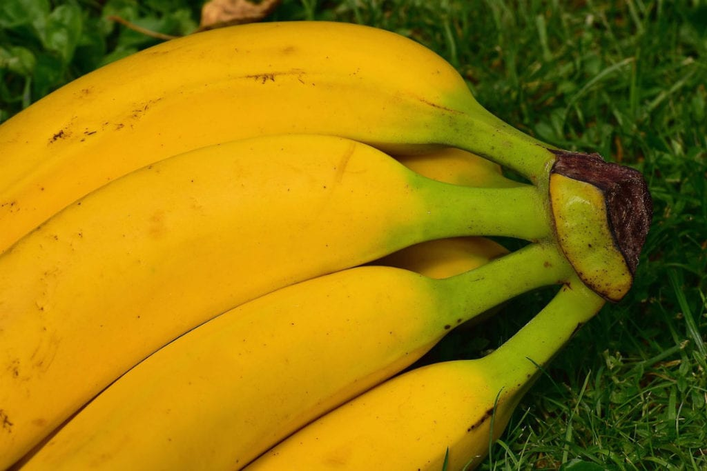 Hyperkalemia: Eating Too Many Bananas Is Actually A Thing