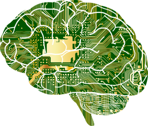What Trigeminal Neuralgia Looks Like in Your Brain