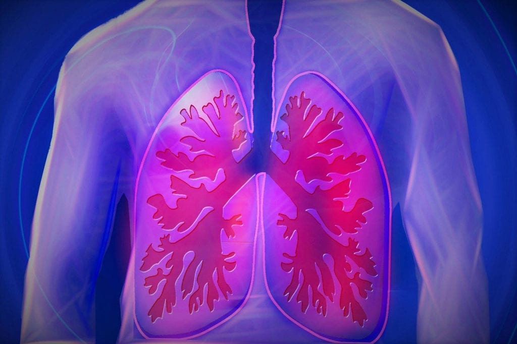 The NIH Has Granted $8.9 million to Researchers Investigating a Drug For Idiopathic Pulmonary Fibrosis
