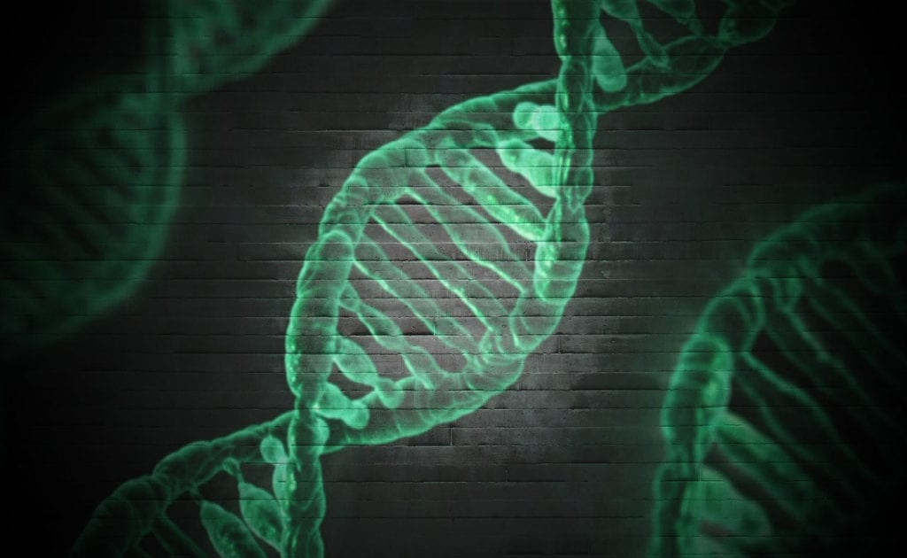 Gene Therapy for Fanconi Anemia Gains IND Clearance From the FDA