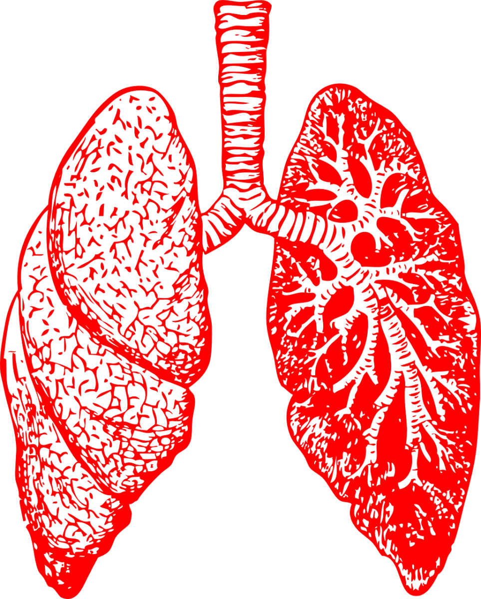 New Phase 1b/2a Trial for Pulmonary Sarcoidosis is on its Way!
