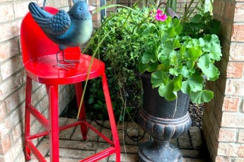 red stool, bird, plants