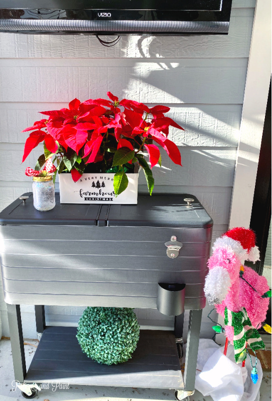 Poinsettias, flamingo