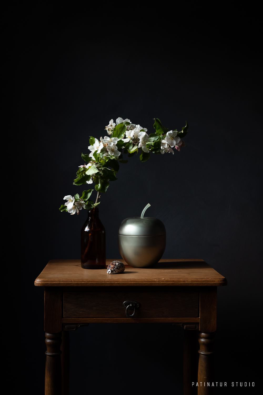 Photo Art | Dark and moody still life with appleblossom