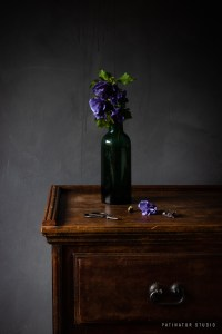 Photo Art | Dark and moody vanitas still life with hibiscus flowers