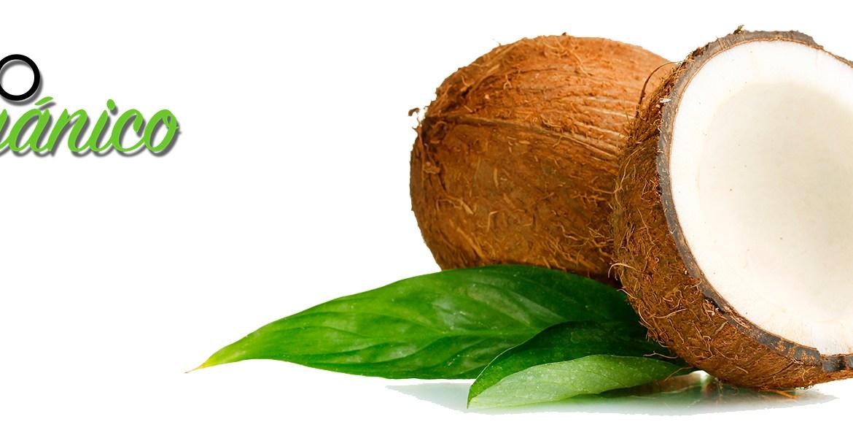 Los-beneficios-del-coco-ahora-en...-harina