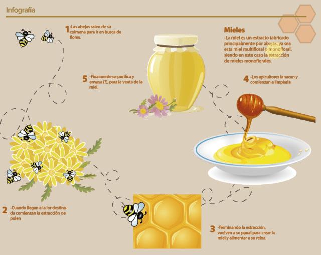 De dónde viene la miel