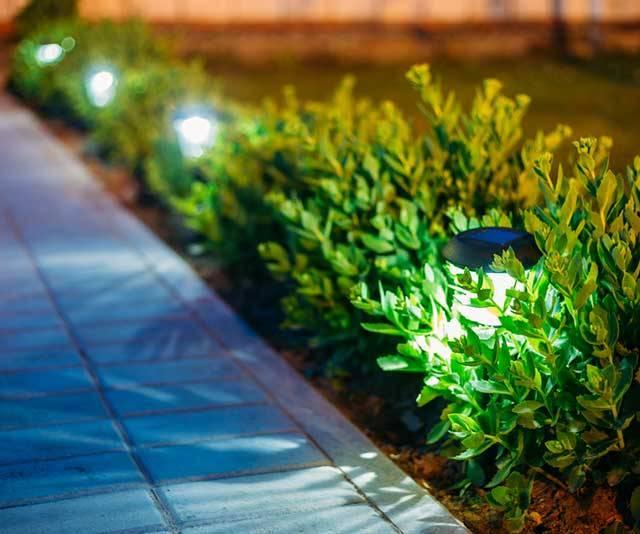 Best Outdoor Solar Lights – Buyer's Guide