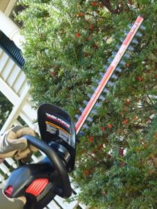 Best Hedge Trimmer - Pic 2