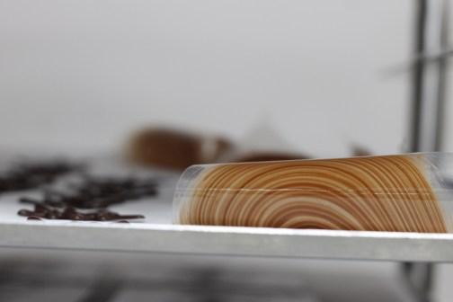 בול עץ - הדגמה ״אקסטרה״ לתלמידים