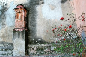 Arch detail monument and rose canvas
