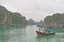 Boat and floating village cat ba