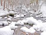 Lithia Creek snow ls mdownstream