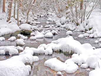 Lithia Creek snow ls mdownstream