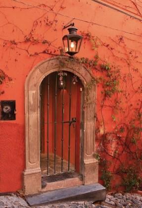 door sm vines and lamp
