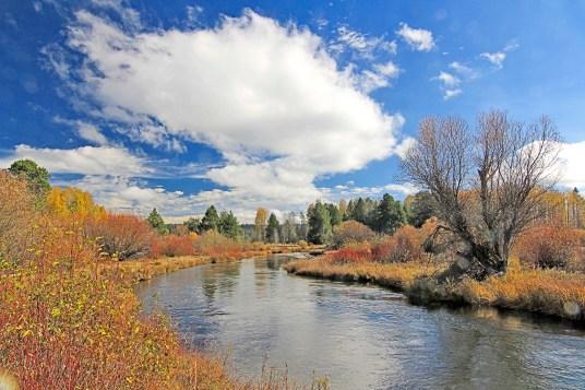 Wood River & Cloud, Klamath Basin