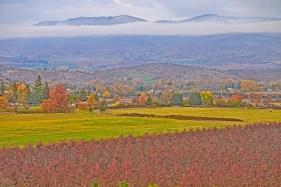 Autumn Beauty, Rogue Valley