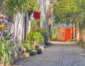 sayulita plants and alleyway copy