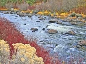 Sprague River Autumn