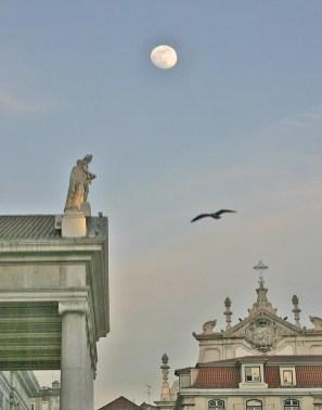 Lisbon Moon and Gull