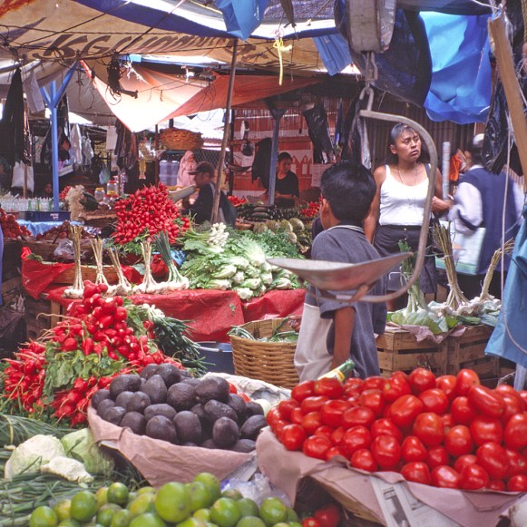 OAx market tomatoes and boy tryp